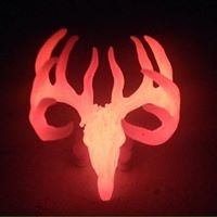 Metal Shed Cast Antlers