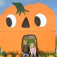 Misty Meadow Farm Corn Maze and Pumpkin Patch