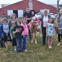 Cloverland Pony Rides & Petting Zoos