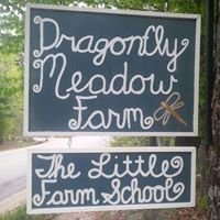 Dragonfly Meadow Farm