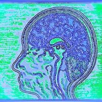 Mind Body Brain Connections MBB Connections