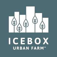 Icebox Urban Farm