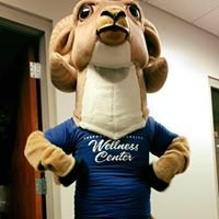 Shepherd University Wellness Center
