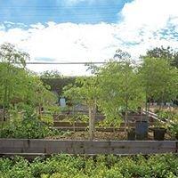 Mt. Hope Community Garden
