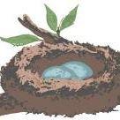 Happy Nest Professional Organizing