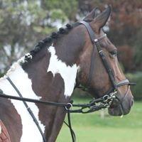 Pebsham Equestrian Centre