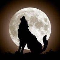 The Moon (Storrington)