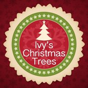 Ivy's Christmas Trees