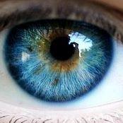 Brandon Eye Clinic