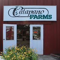 Catapano Farms (Greenhouse)