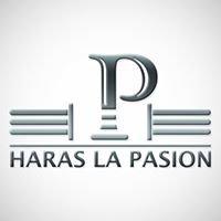 Haras La Pasión