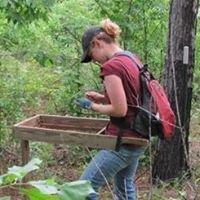 University of South Alabama Anthropology Program