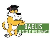 GAELIS : les assos et élus étudiants de Lyon