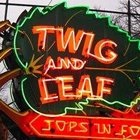 Twig And Leaf