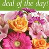 Altamonte Springs Florist
