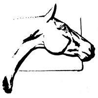 Core Equestrian