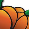Pumpkin Point Farms