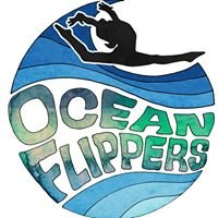 The Ocean Flippers Jr. Olympic Competitive Gymnastics Team