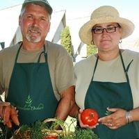 Stonelane Orchard Nursery & Market Garden
