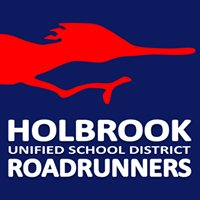 Holbrook Unified School District #3
