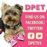 DPet & Gift