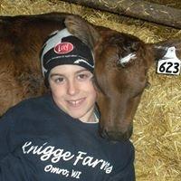 Knigge Farms