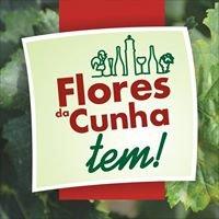 Turismo Flores da Cunha