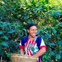 Finca La Familia coffee growers