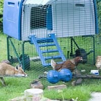 All Feathers and Fur Vertebrate Pest Management