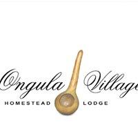 Ongula Village Homestead Lodge, Namibia