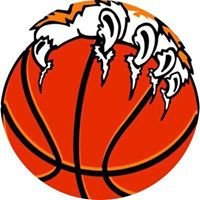Andersonstown Tigers Basketball Club