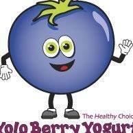 Yoloberry Yogurt