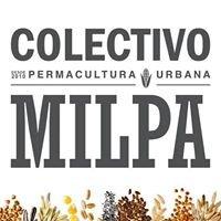 Colectivo Milpa