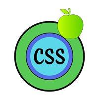 CSS Diet