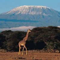 Tin Tin Tours Tanzania