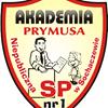 Akademia Prymusa Sochaczew