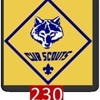 Cub Scout Pack 230