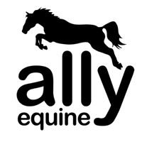 Ally Equine Coalition and Rescue