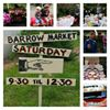 Modbury Barrow Market