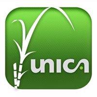 Unica - União da Indústria de Cana-de-Açúcar
