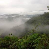 Kasaguadua Natural Reserve and Ecolodge