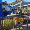 Prospect Hill Garden Center