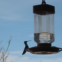 Hummingbird Ranch Vacation House