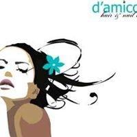 D'Amico Hair & Nail Lounge