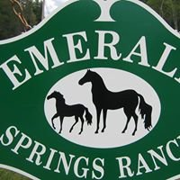 Emerald Springs Adirondack Ranch LLC