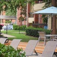 Shadows of Cottonwood Apartment Community