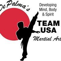DePalma's Team USA Martial Arts - Surprise