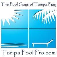 The Pool Guys of Tampa Bay Tampa Pool Pro