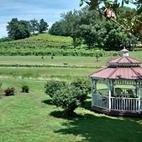 Cache River Basin Vineyard & Winery