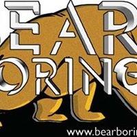 Bear Boring LLC
